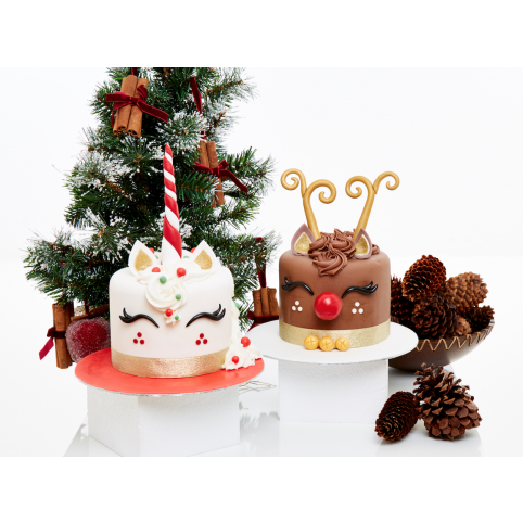 Christmas Unicorn or Red Nose Reindeer Cake Voucher