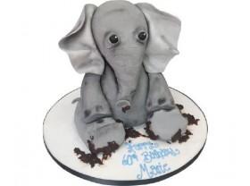 MUDDY ELEPHANT